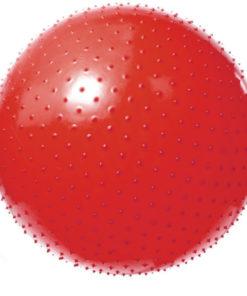 Мяч массажный гимнастический игольчатый Арт. VEGA-602/55