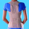 Корсет жесткой фиксации (ортопедическая система) OPPO 2166